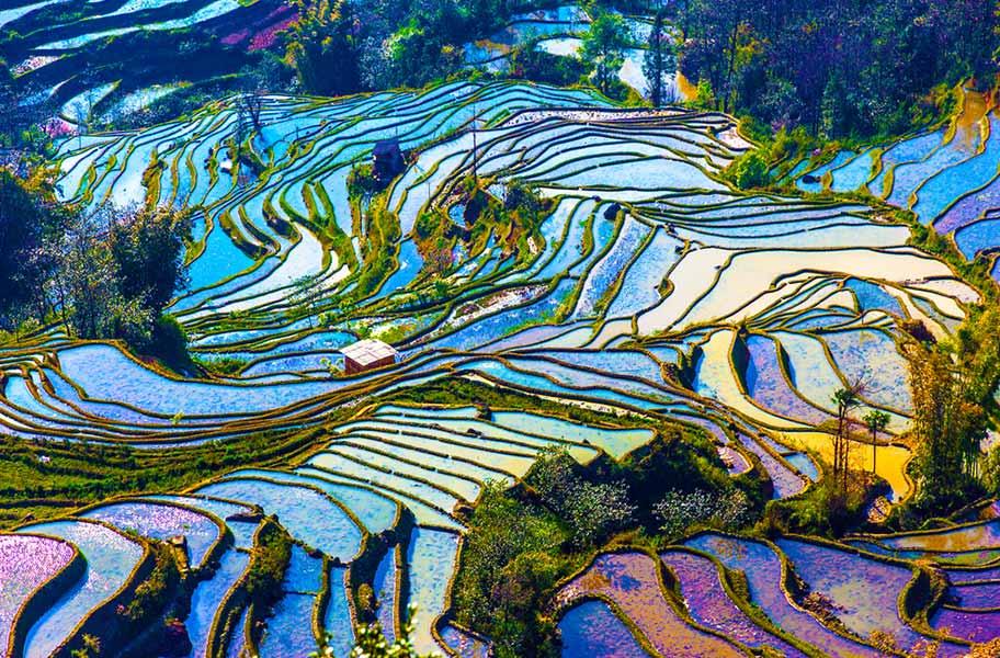 Yunnan Reisen günstig buchen